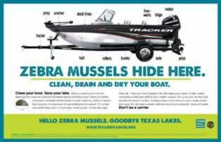 Learn about how to stop Zebra Mussels in Texas lakes