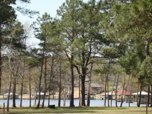 Living on Lake Palestine Texas